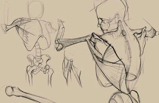 Objetivos del curso de iniciación a ilustración