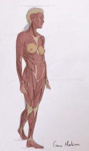 Dibujo anatómico creado por Gracia Martínez